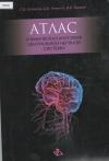 Атлас клиническая анатомия центральной нервной системы